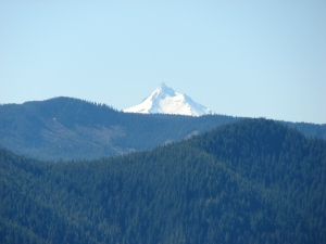 Mt. Jefferson from the rock garden