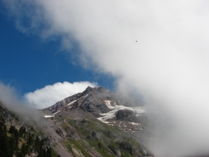 Red Tailed hawk over Mt. Hood