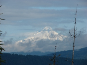 Mt. Hood from Potato Butte