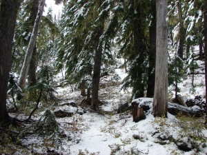 Double Peaks Trail