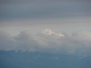 Mt. Hood