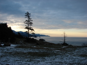 View south from the Ecola Picnic Area